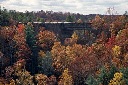 Natural Bridge, Kentucky, 2008