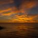 Bluff Cove Sunset