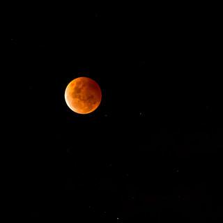 Blood Moon Oct 2014, Sydney   by elpolodiablo