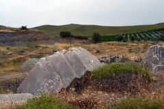 Roman quarry at Karagöl (Teos), Turkey (1)