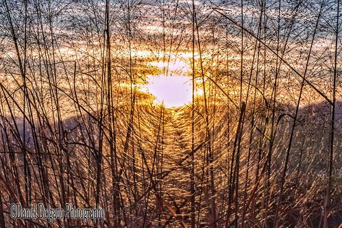 light sunset sky naturaleza sun luz sol nature yellow canon landscape bright artistic creative paisaje puestadesol brillante artistico creativo danieldelgado canon70d danieldevad danieldelgadophotography