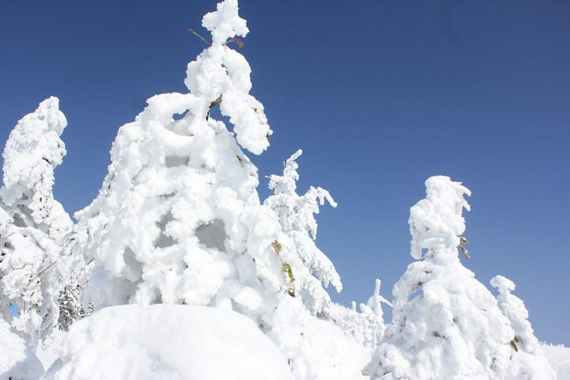 北横岳の雪山登山