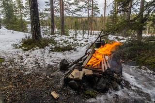 Petäjäjärvi & Liinalamminneva
