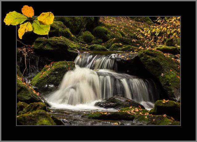 Herbst in der Steinklamm  (Autumn in the 'Steinklamm'