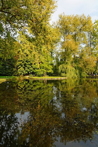 kessello park provinciedomein lake leuven vlaamsbrabant louvain trees water reflections landscape nature brabantflamand belgium belgië belgique nikon d7100 1685mmf3556 pantchoa françoisdenodrest