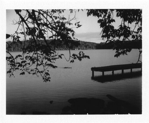 blackandwhite pier dock ducks waterfowl instantfilm fortloudonlake polaroidlandcamera100 fujifilmfp3000b