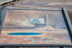 Castle-Geysir