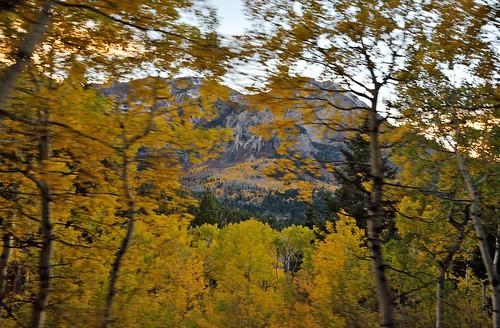autumn sunset fall nature beautiful wonderful landscape utah natural loop alpine splendor americanforkcanyon