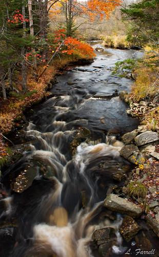 novascotia stream river water fallcolours autumn nature canon canondslr dslr canonrebel canonxsi canonrebelxsi