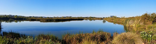 sanjoaquinwildliferefuge irvine california photo digital spring morning pond panorama landscape wetland