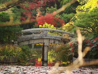 Kinkaku-ji & Ryoan-ji   by Alex.Hurst