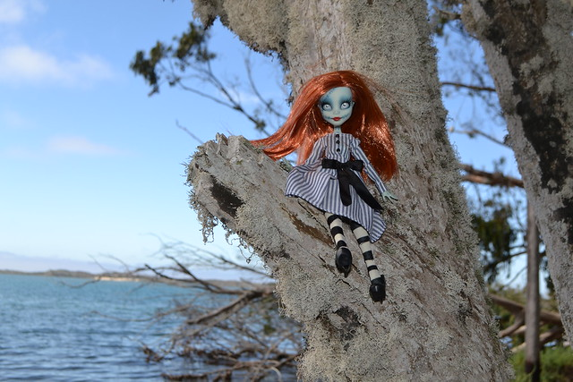 Sally Climbing Trees