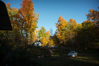 Morning View of Our Homestead with Fall Foliage (As Seen From Camper) | by goingslowly