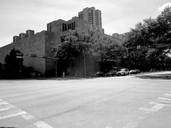Musée des beaux-arts de Houston