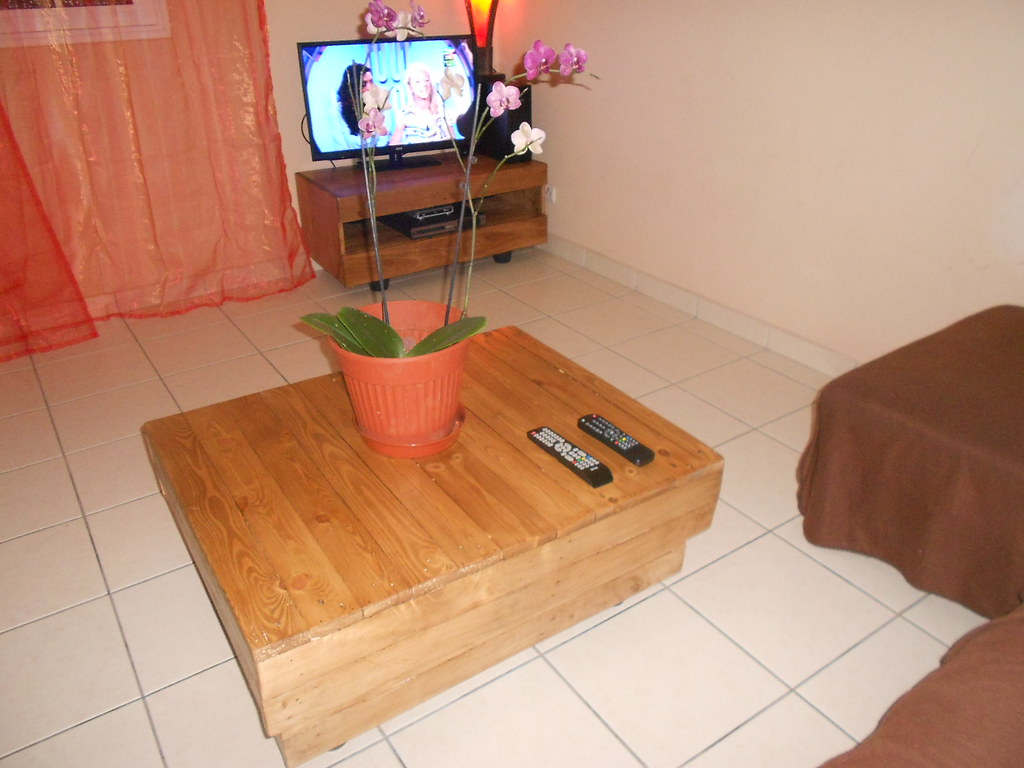 Meuble télé / Pallet TV stand and coffee table