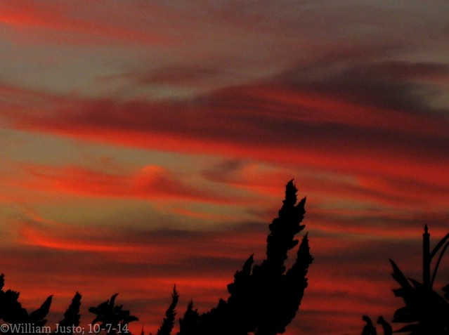 Cirrus Clouds On Fire This Evening Over The City! (10-7-14) Photo #1