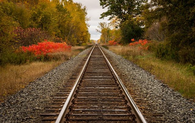 Rail Landscape Study-3762