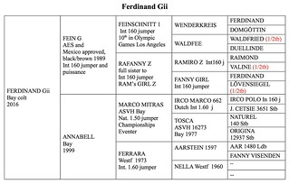 Ferdinand Gii Pedigree | by hgustavii
