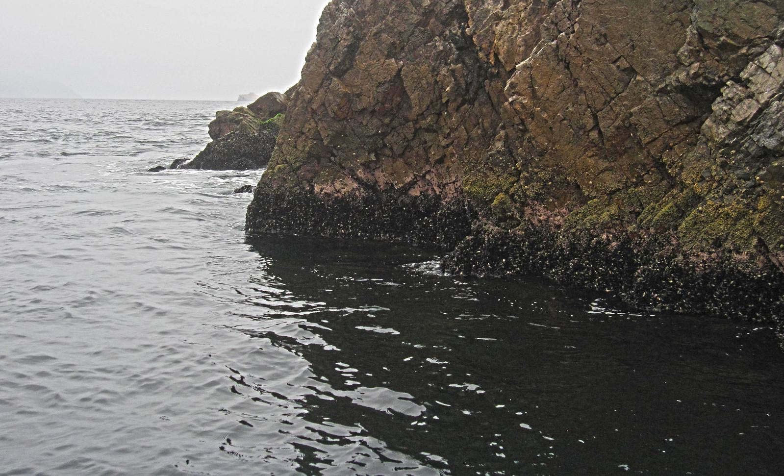 Islas Ballestas 32