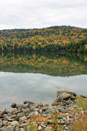 autumn trees sky canada nature water canon reflections river rocks colours seasons tide country fallfoliage newbrunswick colourful maples riverrocks waweig hillspoint