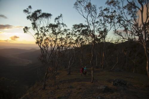 sunset farm australia places queensland orielly lukes lamingtonnationalpark