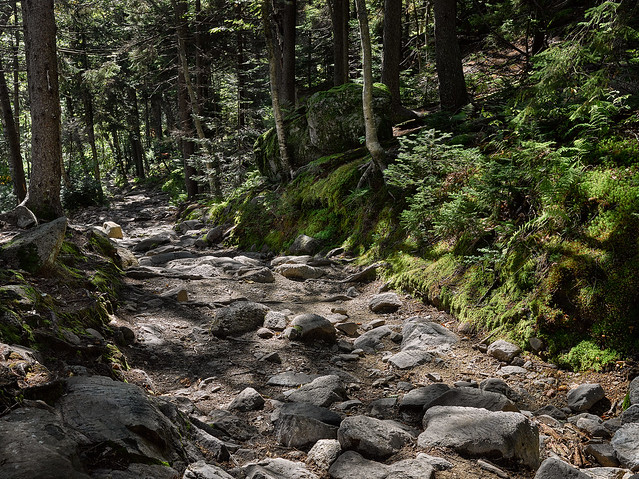 Rocky mountain path, Kearsange New Hampshire