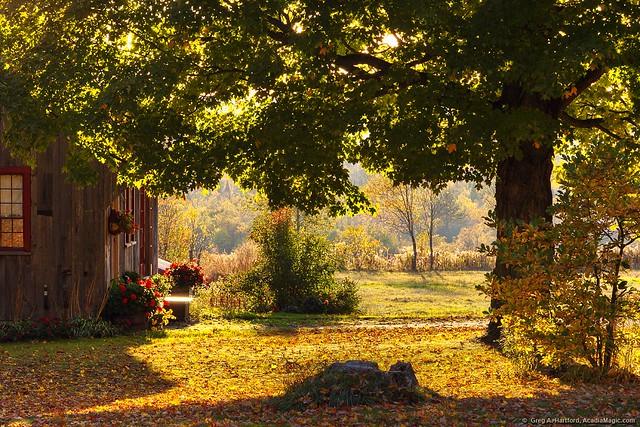Maine USA Autumn