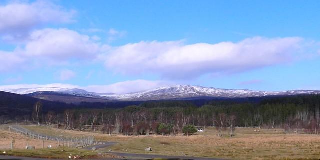 The Monadhliath Mountains, Highland Wildlife Park, Kincraig, Feb 2017