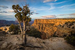 Grand Canyon | by kenfagerdotcom