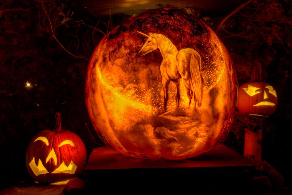 Unicorn Roger Williams Park Zoo Providence Rhode Island 2 Flickr