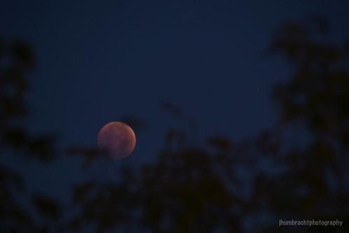 morning light sky moon nature night sunrise stars landscape dawn eclipse blood michigan grandrapids