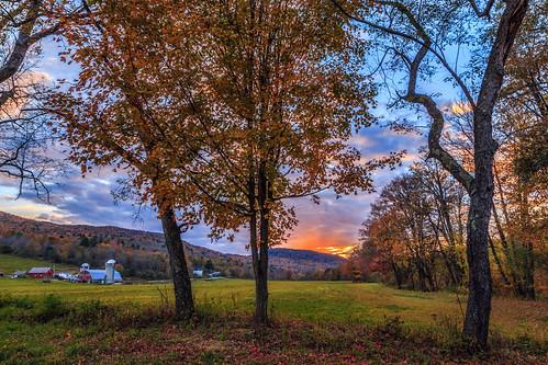 trees sunset arlington vermont farm newengland vt canonef24105mmf4lisusm canoneos6d samanthadecker adobephotoshopcs6