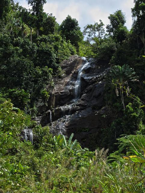 Madagascar5 - 164