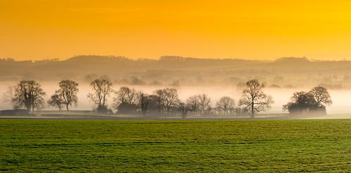 packington measham greenwhitegold stpatricksday ireland irishflag leicestershire mist dawn morning layers