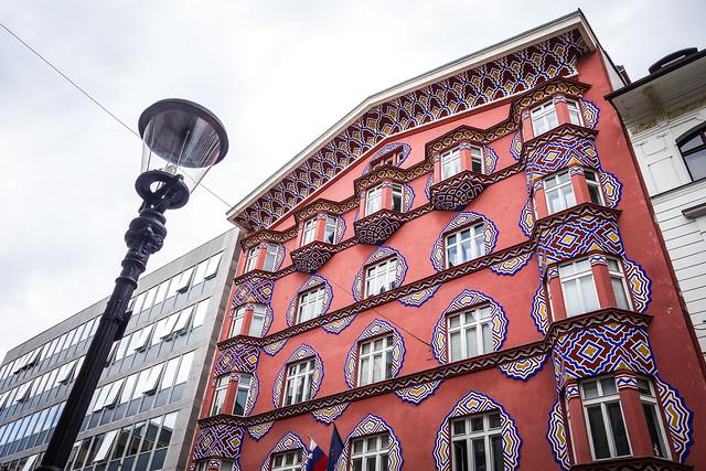 Painted Lady in Ljubljana