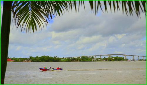 bridge southamerica river boat palmtree suriname paramaribo waterkant surinameriver