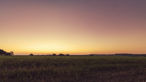 sky field grass sunrise texas country north panoramic roadside
