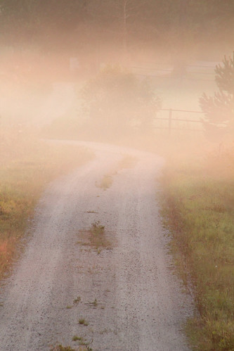 road morning summer mist nature beautiful misty fog sunrise suomi finland dawn countryside finnland country foggy finlandia フィンランド finlande finlândia finnország finlanda finlàndia финляндия finnishsummer finnlando فنلندا