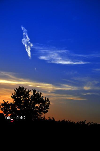 夢幻般的雲