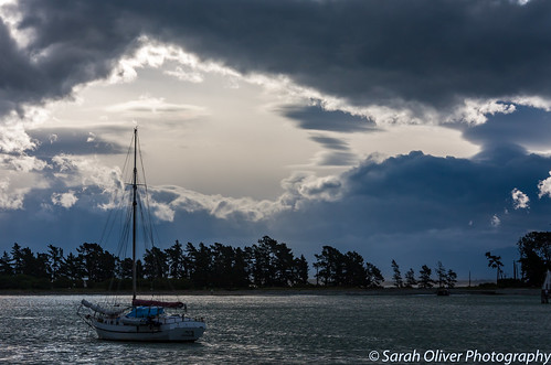 abel bay boat cafe clouds ferry haulashore haven island marlborough moody national nelson new nz park quay shed ship sky south stepneyville storm tasman tug view wakefield yacht zealand canon 40d dramatic silhouette trees