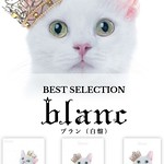 """Aimer(エメ)『BEST SELECTION """"blanc""""』"""