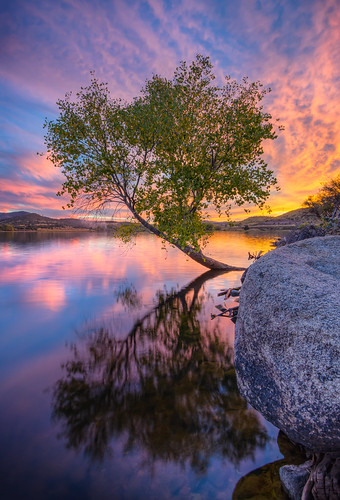 sunset arizona sky reflection tree clouds sunrise az explore tranquil prescott michaelwilson michaelwilsoncom