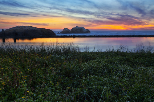 sanfrancisco longexposure flowers sunset sutrobaths hdr hdrphotography canon6d