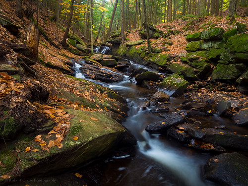longexposure autumn trees fall leaves forest waterfall stream newengland newhampshire nh olympus omd chesterfieldgorge em5 1250mmf3563mzuiko