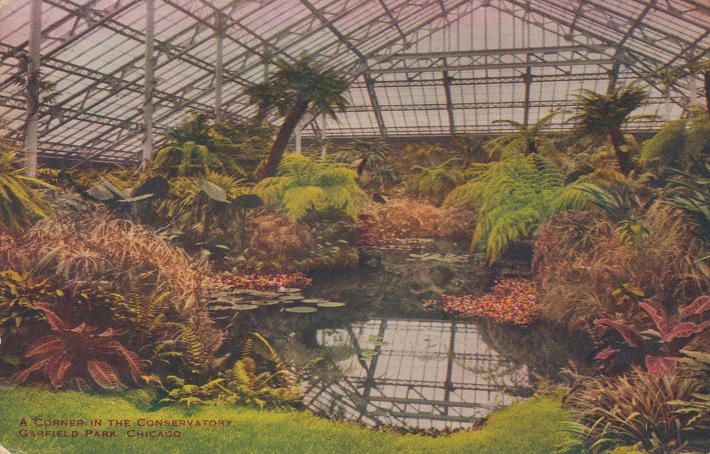 Garfield Park Conservatory Chicago Illinois Mailed From Flickr