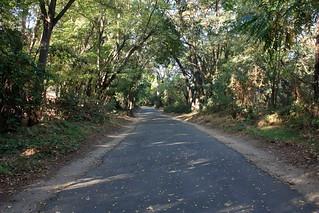 Jedediah Smith Memorial Loop 2014 | by ray_explores