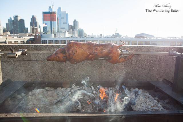 Whole suckling pig getting roasted over the coals