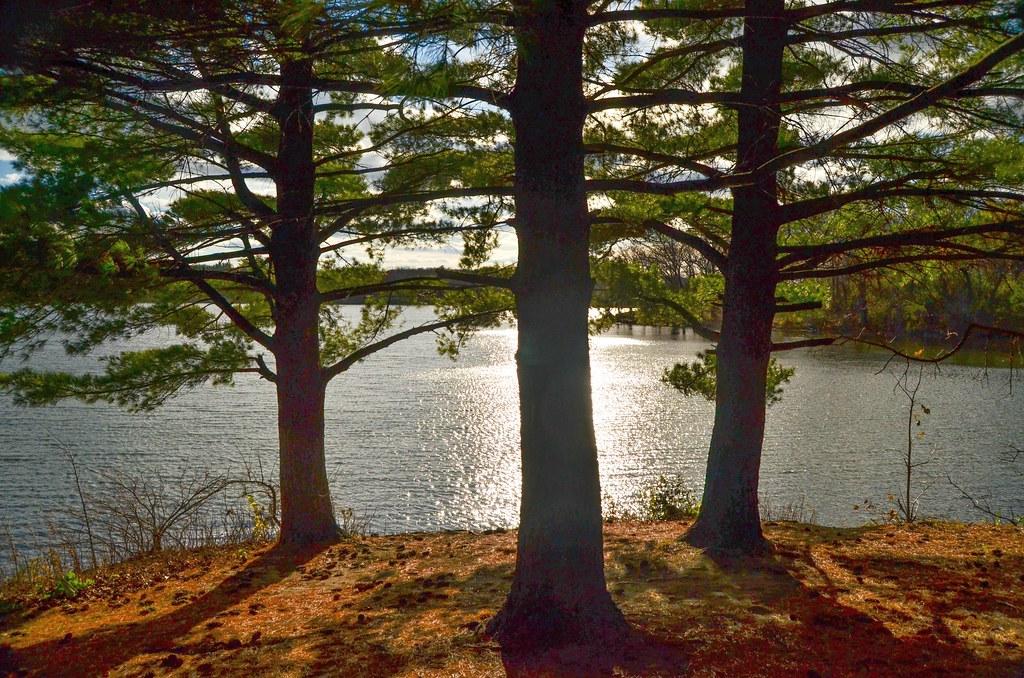 Pierce Lake 15