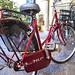 lucca bike