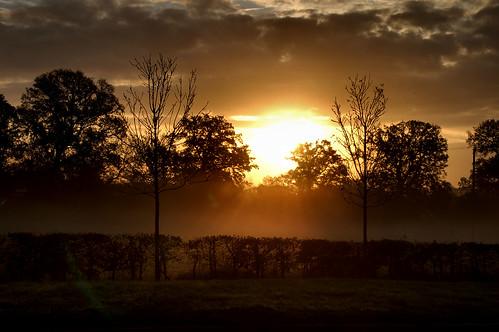 trees sun adam nature beautiful silhouette clouds sunrise d50 dark lens landscape nikon darkness explore devon rise tamron picoftheday 18200mm cullompton stuning moralee adammoralee